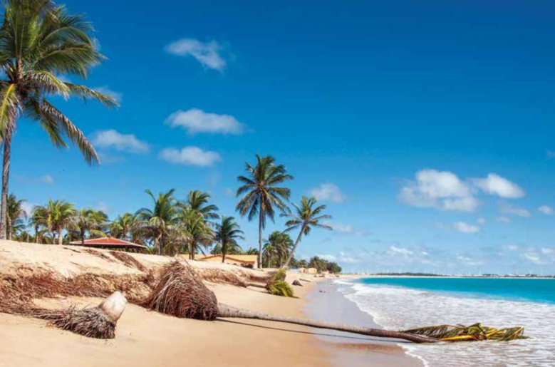 BRASIL  | PRAIA  <br>5 dias / voo + hotel - a partir de 914€<br>